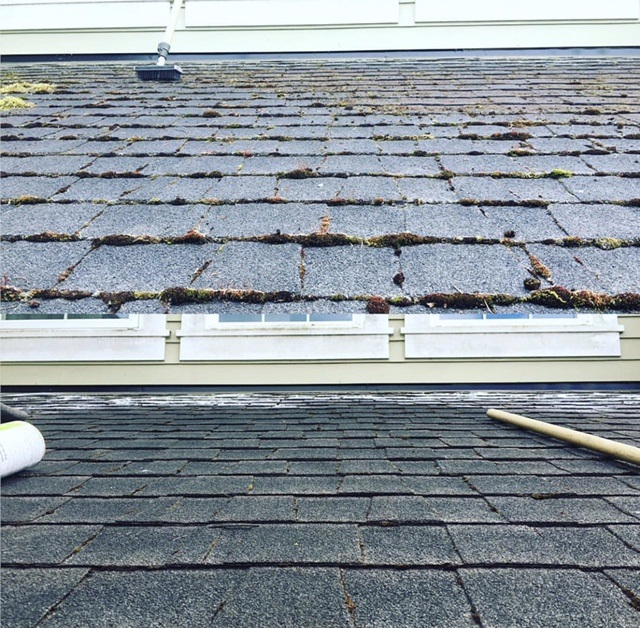 Roof Cleaning World Glass Window Cleaning Seattle Wa